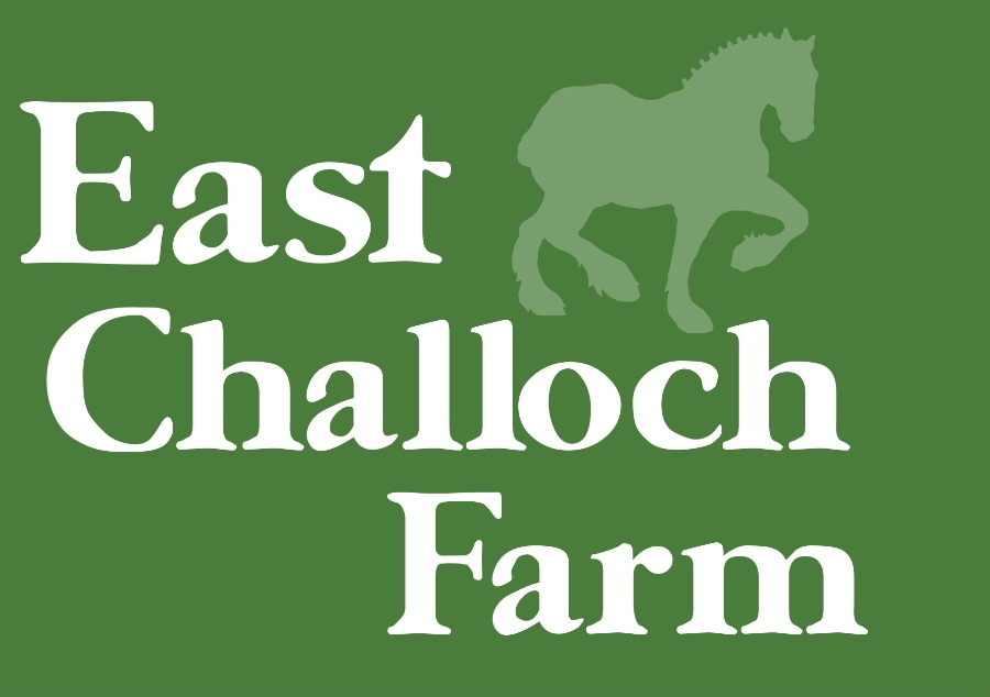 East Challoch Holiday Cottages and B&B